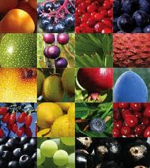 Beautiful Superfoods!