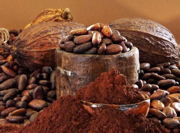 The beginning of Chocolate!
