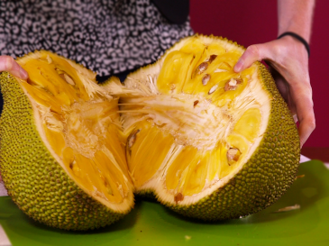 jackfruit-in-half